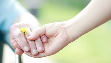 Young and senior hands holding hands with a dandelion